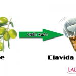 Dầu oliu (Elavida 15%)